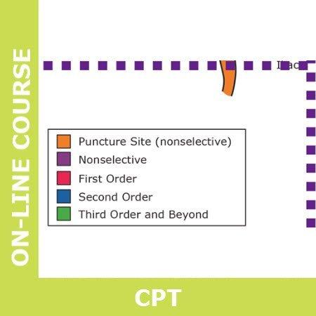 Coding Vascular Interventional Radiology VIR Part 7